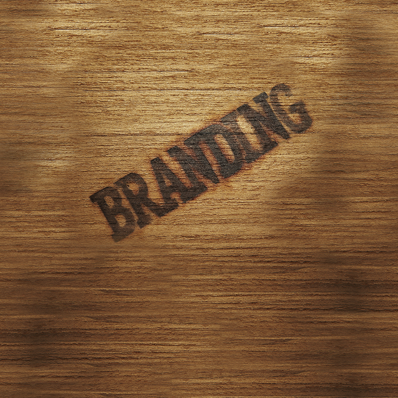 Cohesion Design, thought leadership on branding